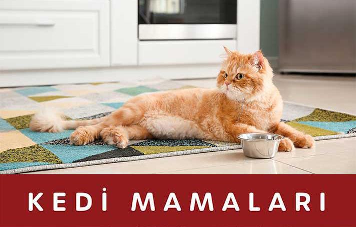 Kedi Mamaları