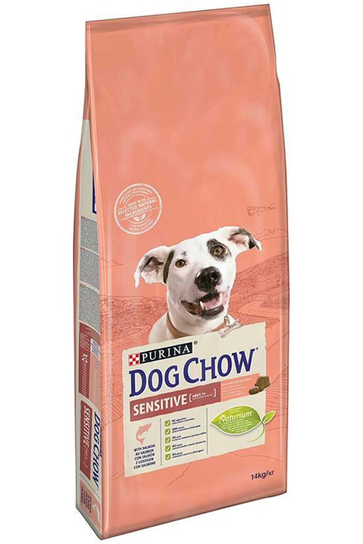 Dog Chow Hassas Köpekler için Somonlu Yetişkin Köpek Maması 14kg