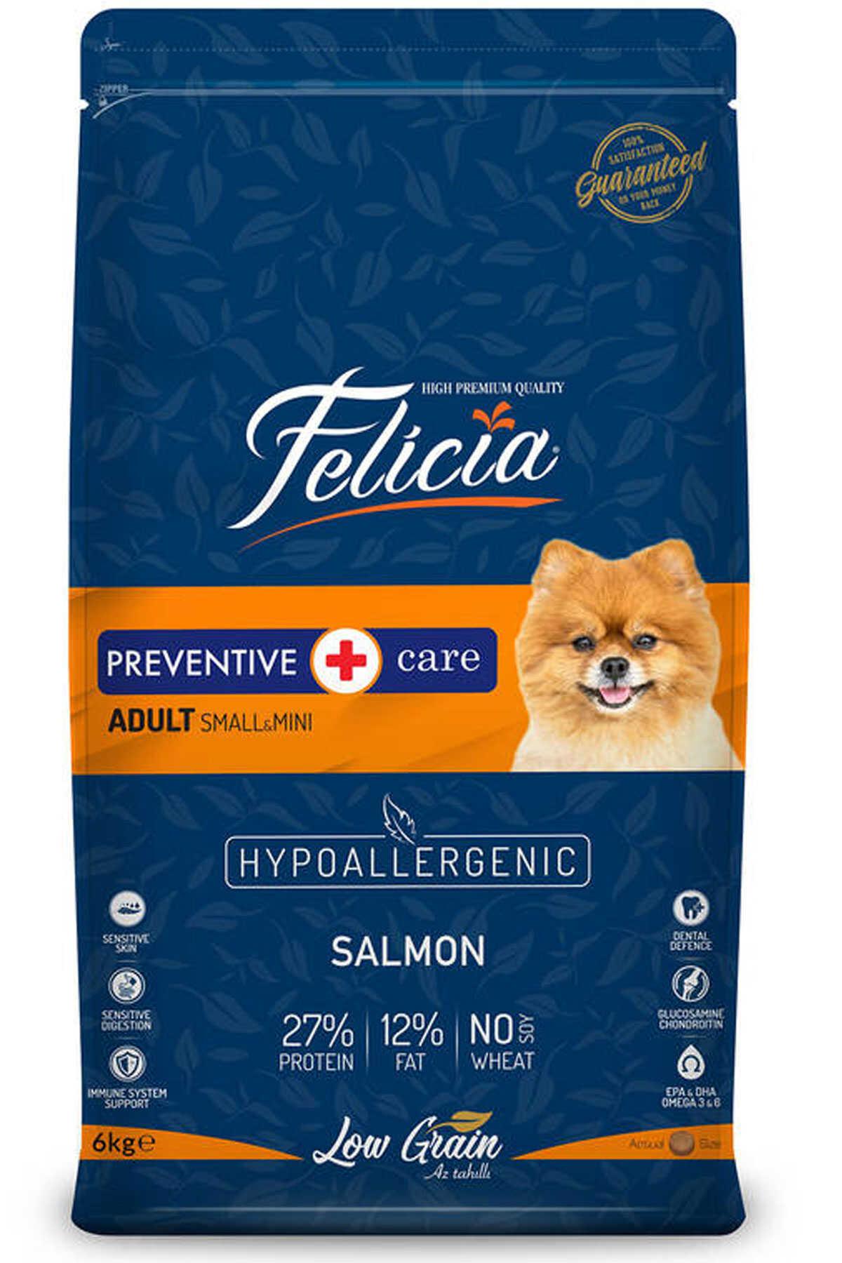 Felicia Düşük Tahıllı Hipoalerjenik Somonlu Küçük Irk Yetişkin Köpek Maması 6kg