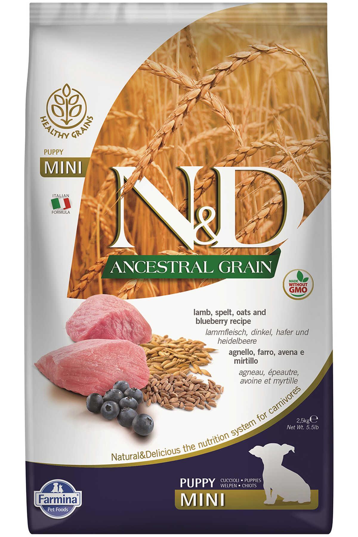 ND Ancestral Grain Tahıllı Kuzu Eti ve Yaban Mersinli Küçük Irk Yavru Köpek Maması 2,5kg