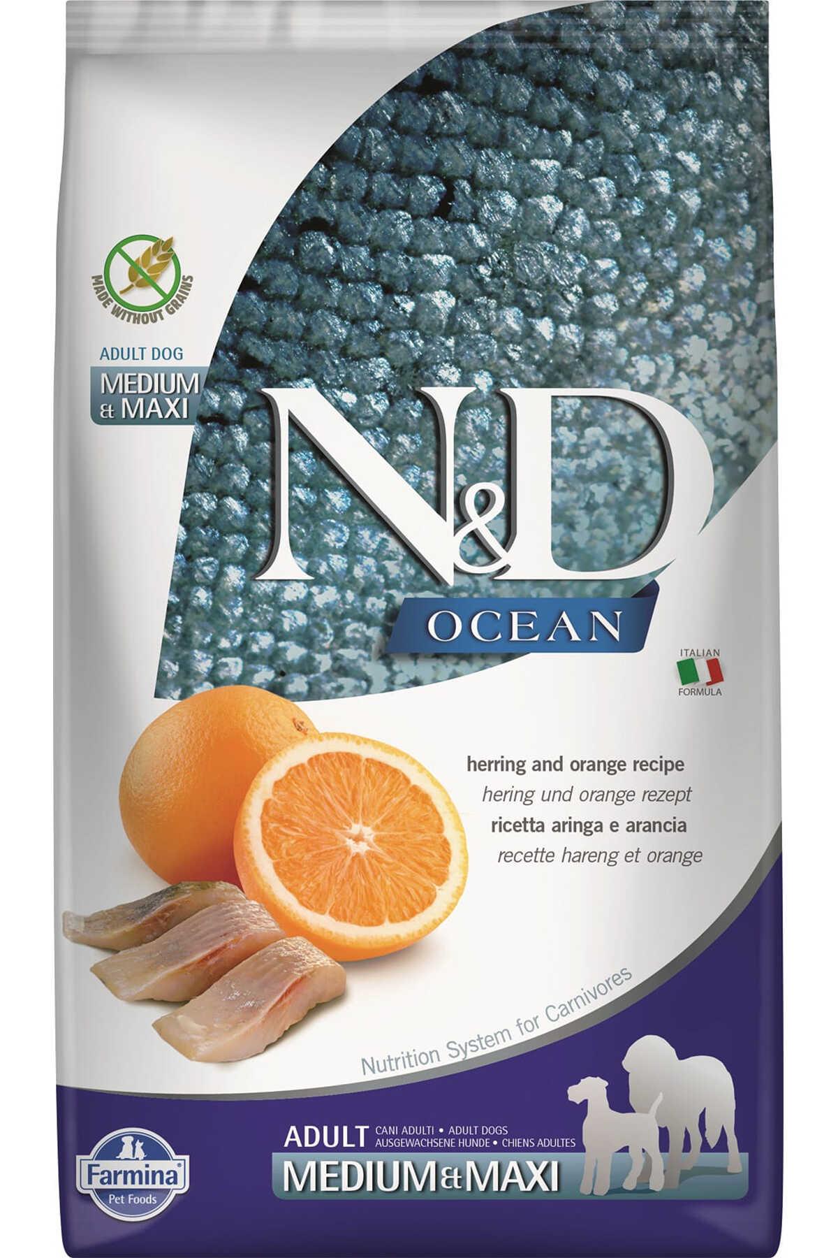 ND Ocean Tahılsız Ringa Balığı ve Portakallı Orta ve Büyük Irk Yetişkin Köpek Maması 12kg
